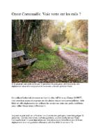 161119_article_Telegramme_VV_Trans-Cornouaille